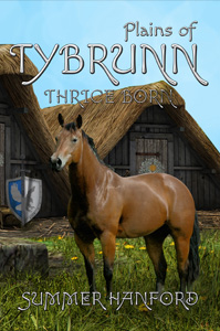 Plains of Tybrunn by Summer Hanford