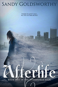 Afterlife - An Aftermath Novella (The Afterworld Saga) by Sandy Goldsworthy